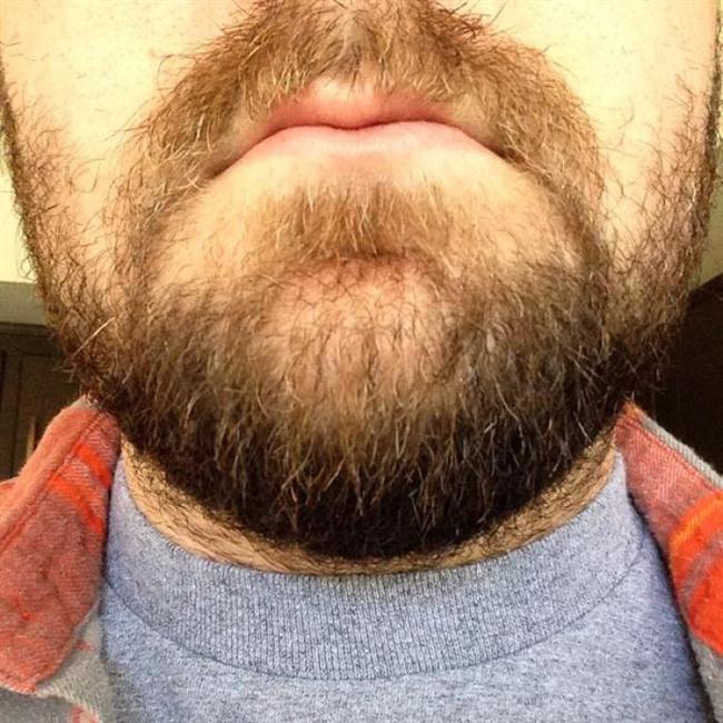 How to celebrate World Beard Day