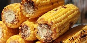 Corn On The Cob Day