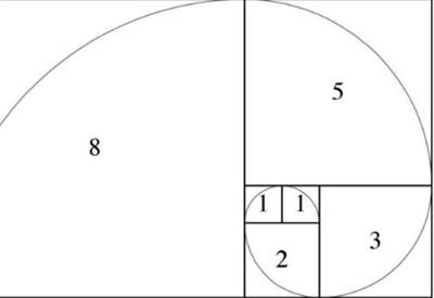FIBONACCI DAY/ Il giorno dedicato al matematico pisano e alla sua sequenza di numeri