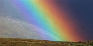 Find A Rainbow Day