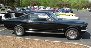 Ford Mustang Day