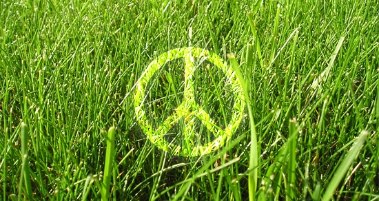 Greenpeace Day
