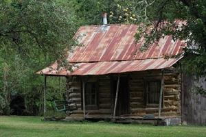 Log Cabin Day
