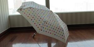 Open An Umbrella Indoors Day