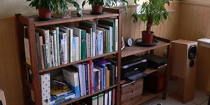 Organize Your Home Day