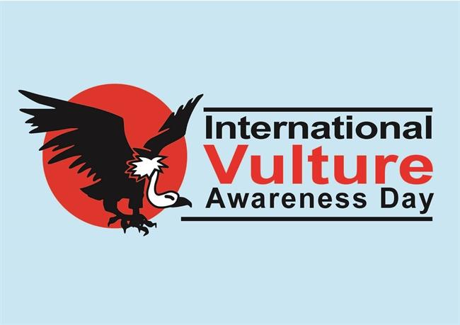 International Vulture Awareness Day: no cause for celebration?